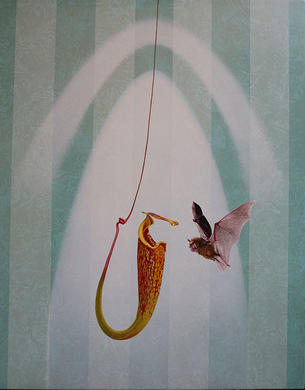 Bat and Pitcher Plant by Bob 'Omar' Tunnoch