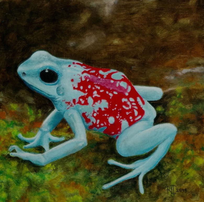 Poison Arrow Frog by Bob 'Omar' Tunnoch