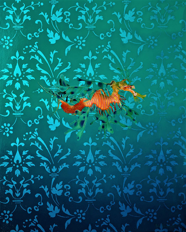 Leafy Sea Dragon by Bob 'Omar' Tunnoch
