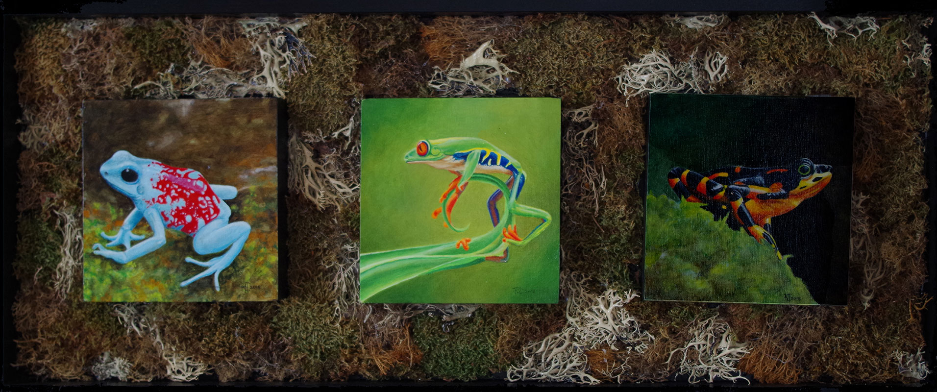 The Sopranos #1 Poison arrow frog, Red eyed tree frog, Harlequin frog by Bob 'Omar' Tunnoch